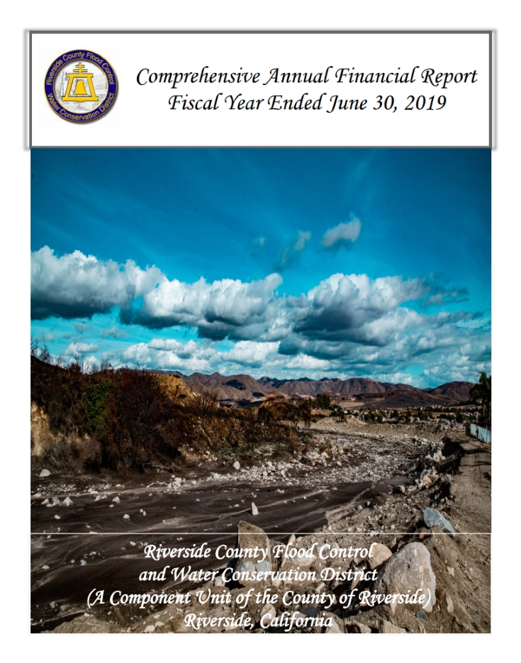 2019 Comprehensive Annual Report
